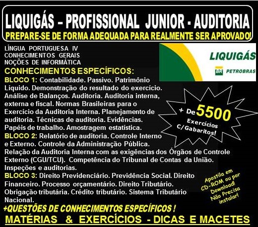 Apostila LIQUIGÁS DISTRIBUIDORA - PROFISSIONAL Jr. - AUDITORIA - Teoria + 5.500 Exercícios - Concurso 2018