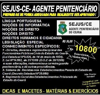 Apostila SEJUS-CE - Agente Penitenciário  - Teoria + 10.800 Exercícios - Concurso 2017